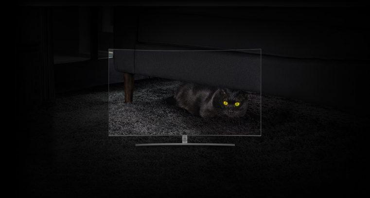 9 HDR gato no escuro 761x408